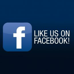 Facebook Ads - facebook ad gordo web design fort lauderdale 259x259 c