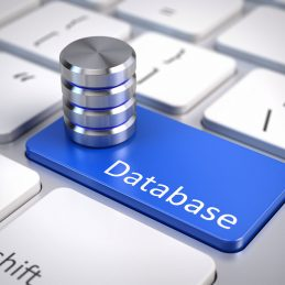 Website & Database Backups - website database backups gordo web design fort lauderdale 259x259 c