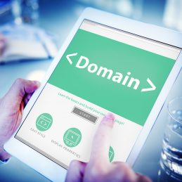 New Domain Registration per Domain - website domain management gordo web design seo 259x259 c