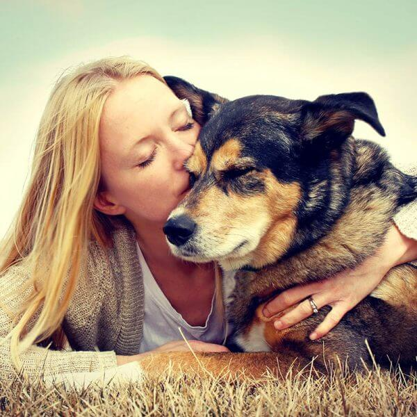 Veterinary & Animal Rescue Professional Website – Complete Internet Marketing Package