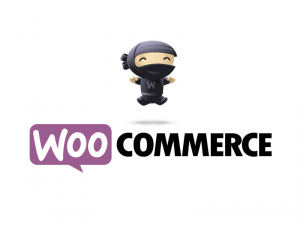 woocommerce Wu Commerce - Code.Rules.Everything.Around.Me - C.R.E.A.M. - Woo Commerce Parody - woocommerce
